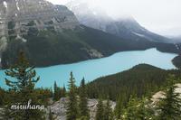 ペイトー湖の見える峠へ*vol.1 - MIRU'S PHOTO