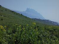 花と湖を周る絶景ハイキング - ヘレンレイク - ヤムナスカ Blog