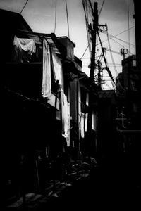 Alley - haze's photos