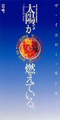 京都の1995年8月と2018年の7月の気温 - ピンキージャンク
