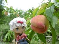 今年の桃は甘い - 雪うさぎのお裁縫箱