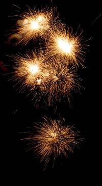 ご近所の花火大会 - オバサンが行く ヒマラヤの青いけしの旅/改め   時々蔵王の花たち