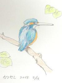 絵を描いてみた - 浅川野鳥散歩