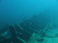 2012.11 カリブ海 The 4th day The 1st Dive - ランゲルハンス島の海