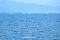 夏の海 - cache-cache