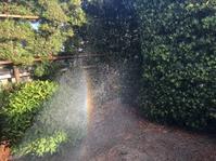 虹を… - 暮らしのおともに