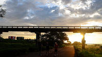 長い木の橋 朝 - 長い木の橋
