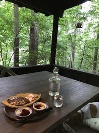 デッキで一杯 - 木洩れ日の森から