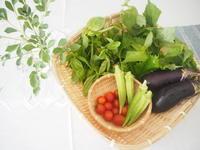 新鮮野菜をいただきました。 - 湘南手織り手作り物語