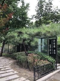 北京からニーハオ9 - お茶をどうぞ♪