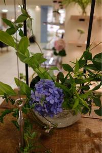 酒と花の日々。本日8/14最終日は20時まで!@札幌大丸 - glass cafe gla_glaのグダグダな日々。