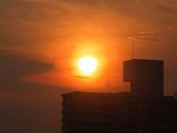 東京の空8 - はーとらんど写真感