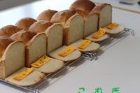 食パン - パン・お菓子教室 「こ む ぎ」