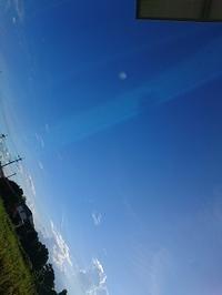ねんきんQuiz-第516問(診断書の様式) - 松浦貴広のねんきんブログ