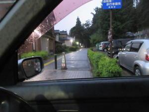 雨の西光寺様ご献灯 - おしゃべりきものⅡ-または、おしゃべりねこ