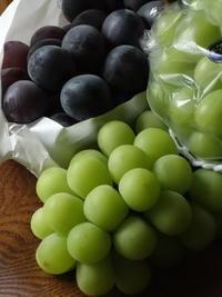 葡萄のもったいない食べ方(ΦωΦ)フフフ… - Baking Daily@TM5
