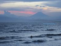 海の家で江ノ島の夕焼けを満喫「エルカンティーナ 」 - イタリアワインのこころ