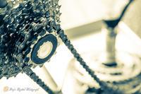 疑似夏休みは自転車整備 - 散策DAY'S excite