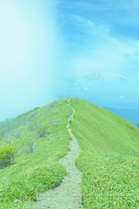 美しき稜線へ①**剣山山系・ジロウギュウへ - きまぐれ*風音・・kanon・・