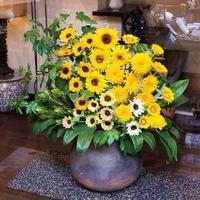 「 Tomoyuki Flowers ( トモユキ フラワーズ ) 」さん の 夏の向日葵 ( ひまわり )♪ - Salon de deux H