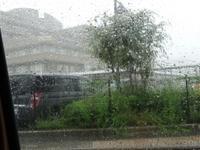 雨だと空いてると思ったのに・・・気圧降下を迎え撃つ - 化学物質過敏症・風のたより2