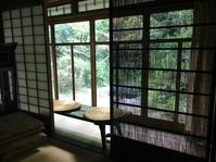 ボランティア清掃と、大楓の木の頼まれごと - 松江に行こう。奈良 京都 松江。 3つの国際文化観光都市  貴谷麻以  きたにまい