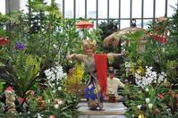 淡路島 奇跡の星の植物館 バリフラワーショー2018 後半のステージ - 大阪でバリ島のガムラン ギータクンチャナ PENTAS@GITA KENCANA