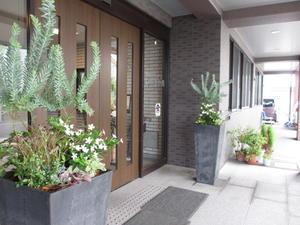玄関まわり - 社会福祉法人播陽灘 特別養護老人ホームいやさか苑