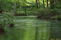 君に見せたい、深い緑とたゆまなく流れる渓谷の水 - I shall be released