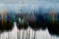 お盆 - ナンちゃんの天然色写真&白黒写真