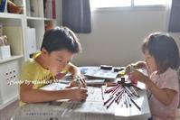 夏の自由研究~小4~ - nyaokoさんちの家族時間