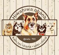 お盆休みは… - ** Hiwahiwa ohana **