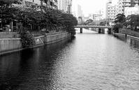 川面 - そぞろ歩きの記憶