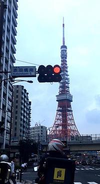 TOKYO TOWER - 花快銘奈々
