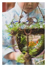 視線 - ♉ mototaurus photography