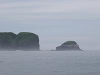 落石ネイチャークルーズ、初乗船♪ - 北の大地で野鳥ときどきフライフィッシング