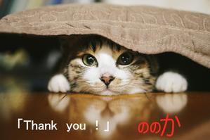 感謝!:お引越しします! - 笹島式着付け教室 衣香のきものめしませ 藤沢(湘南台)