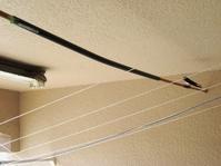 突っ張り棒を連結して長く使う - ツバメの写真