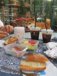 お盆休みの朝食 - yamatoのひとりごと