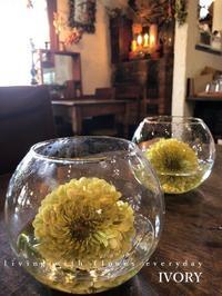 〜お気をつけて〜♬ -  Flower and cafe 花空間 ivory (アイボリー)