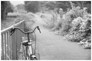 放置された自転車 - BobのCamera