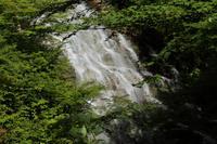 奥四万湖 しゃくなげの滝  - 風の彩り-2