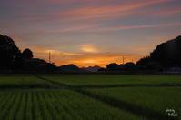 明日香村奥山 ささやかな夕景 - ぶらり記録(写真) 奈良・大阪・・・