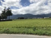 墓参り - 井口克彦の仕事嫌いなスナフキン