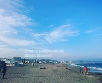 三浦海岸 - surftrippper サーフィンという名の旅