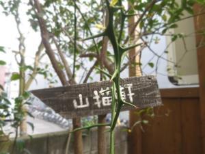 阿佐ヶ谷で気軽にフレンチ「山猫軒」 - イタリアワインのこころ