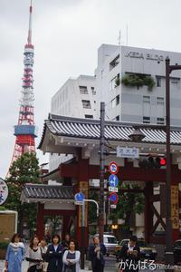 TokyoTower - がんばるhirotan
