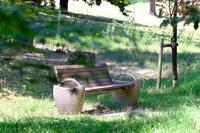 公園のベンチ - 平凡な日々の中で