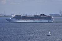 夏の東京湾を往く地中海の客船MSC SPLENDIDA~その1~ - From Denaigner's finder