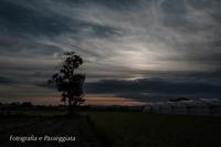 18散歩〜夕暮れの木 - 散歩と写真 Fotografia e Passeggiata